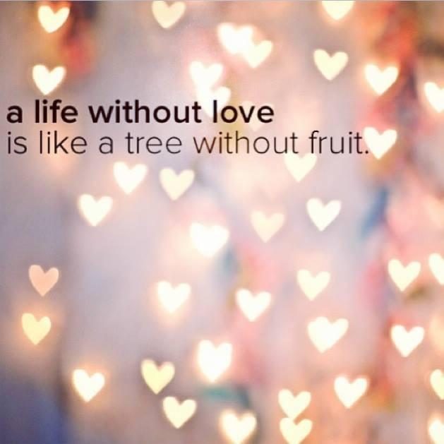 Vida sin amor ..