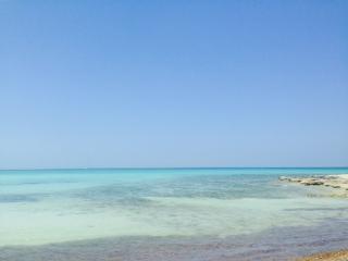 playa  delirio de amor