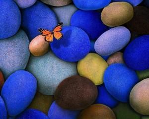 Vuela como mariposa